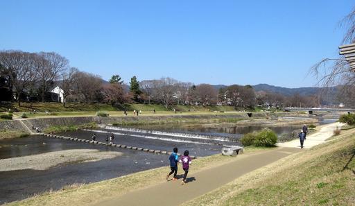 170402_kamogawa1.jpg