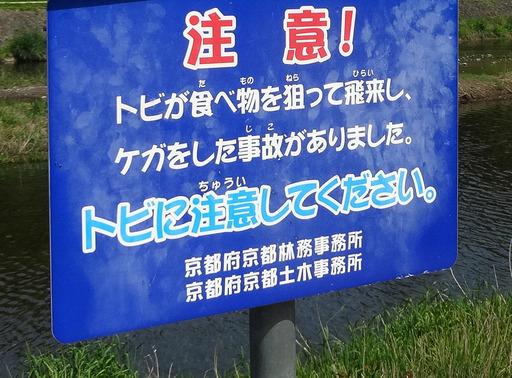 170505_tobi.jpg