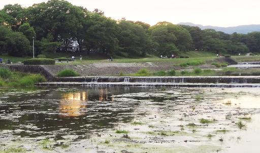 170617_mizumo1.jpg