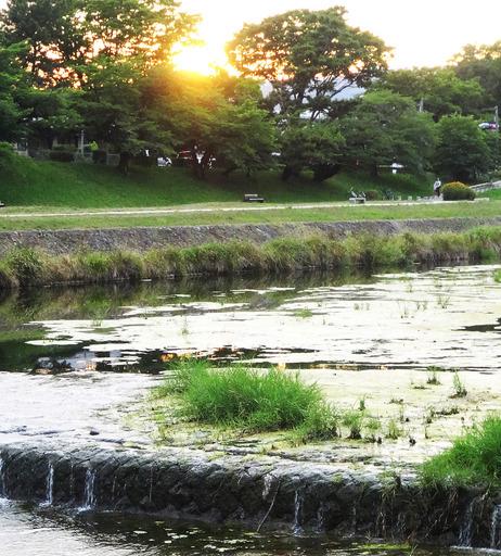 170617_mizumo3.jpg