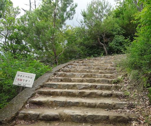 170625_yamamiti1.jpg