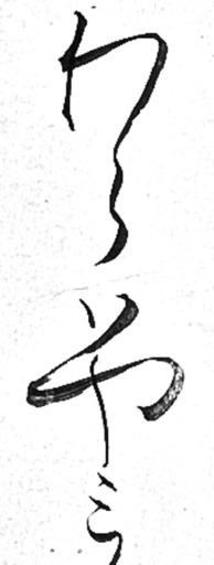 170803waraha2.jpg