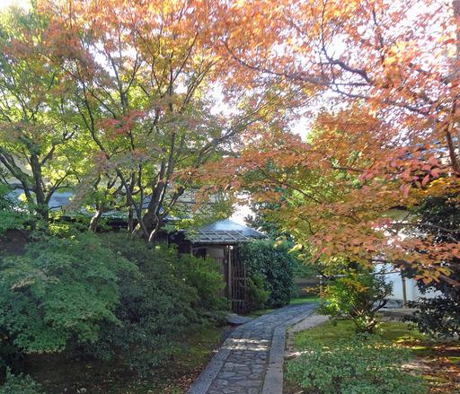 171103_daijiin7.jpg