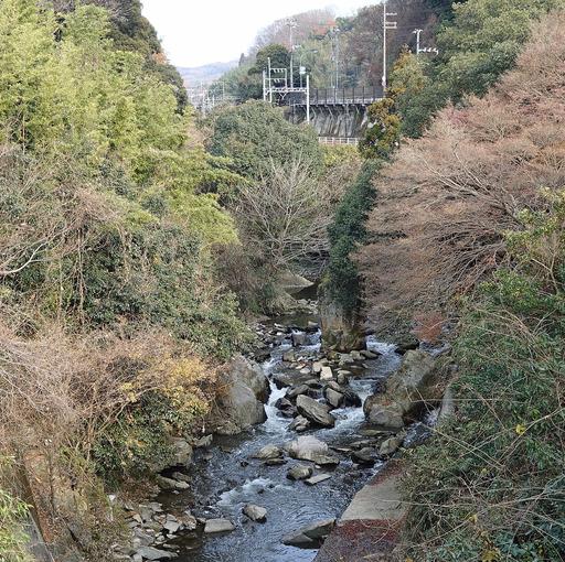 171224_tatsutagawa.jpg