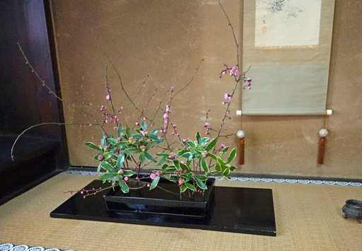 180224_toko.jpg