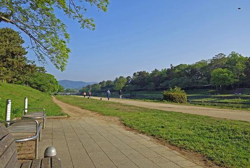 180430_kamogawa1.jpg