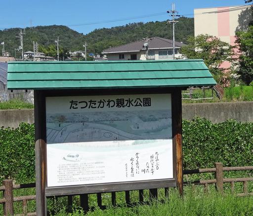 180822_sinsui.jpg