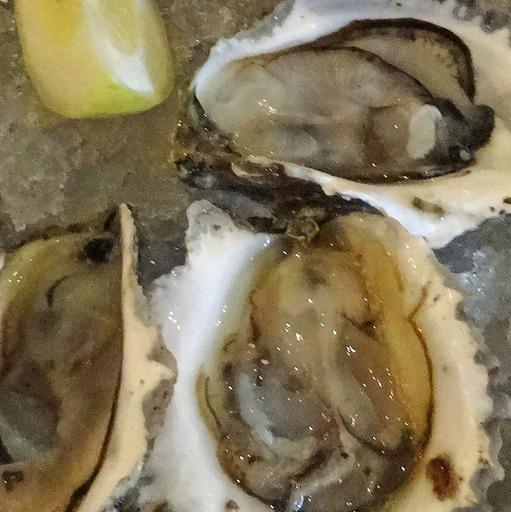 180827_oyster1.jpg