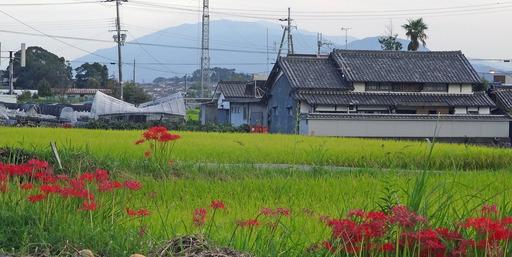 180923_nijyousan.jpg