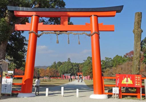 181111_kamigamo1.jpg