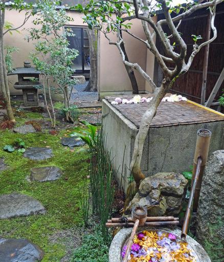 181222_garden.jpg