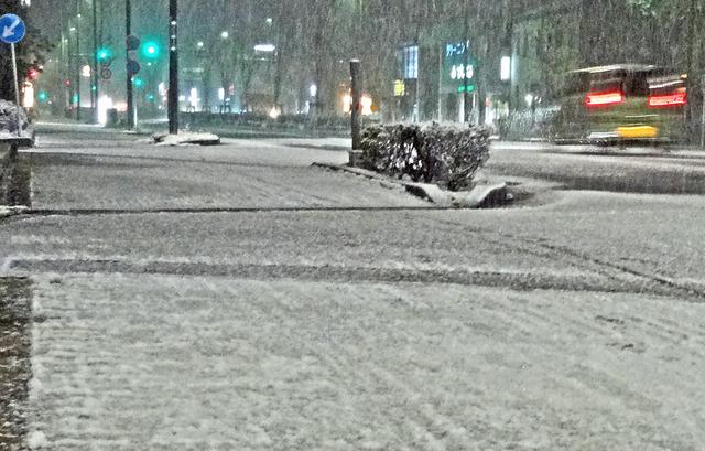 190126_snow.jpg