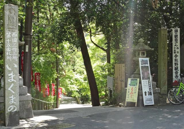 190515_imakumano1.jpg