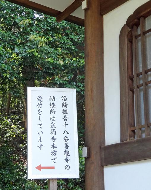 190518_zennoji4.jpg