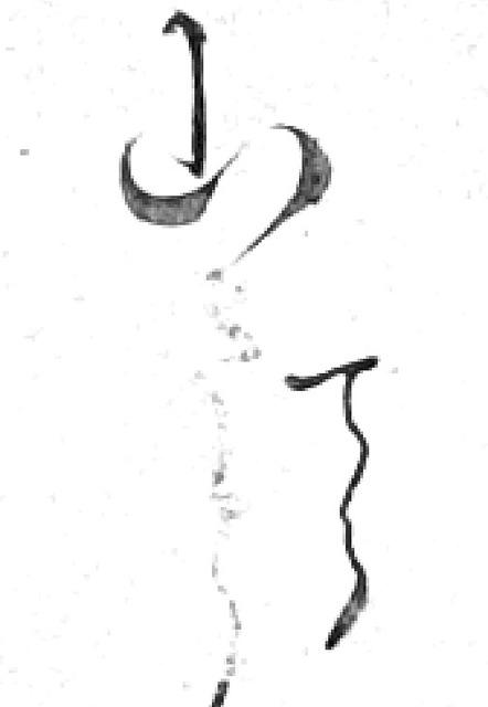 190803_tera.jpg