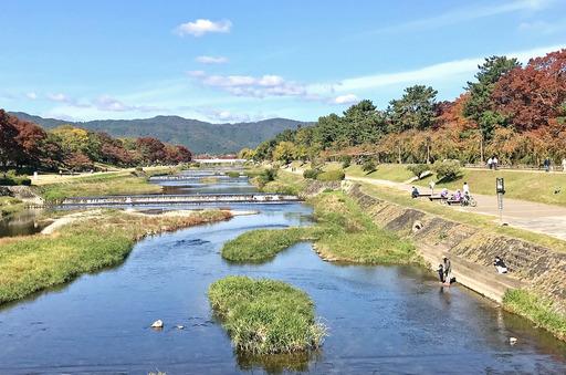 191110_kamogawa.jpg