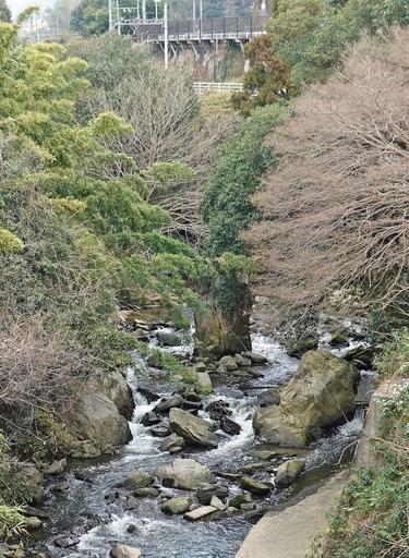 200202_tatsuta.jpg