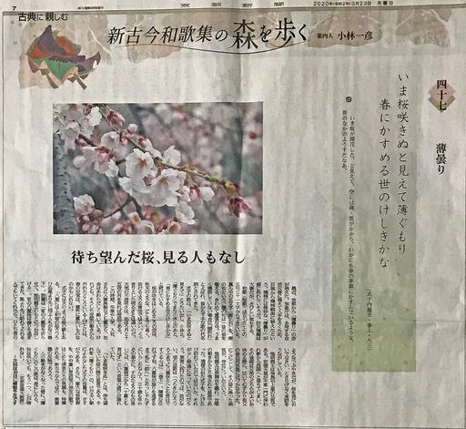 200323_usugumori.jpg