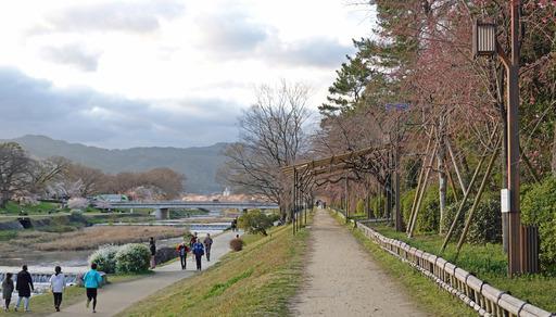 200329_nakaragi5.jpg