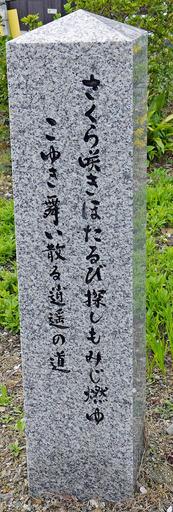 200402_sekihi2.jpg