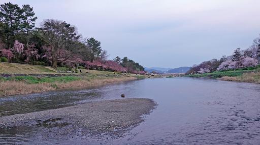 200403_minami.jpg