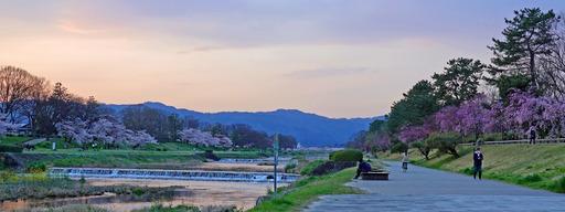 200403_nakaragi1.jpg