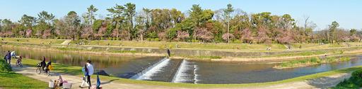 200404_nakaragi1.jpg