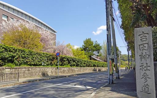 200406_yoshida.jpg
