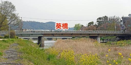 200415_aoi.jpg