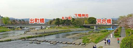 200415_kawai.jpg