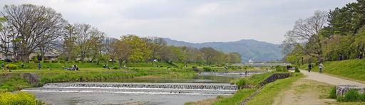 200426_nakaragi1.jpg