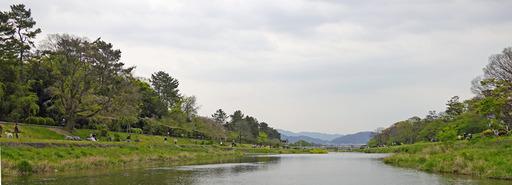 200426_nakaragi2.jpg