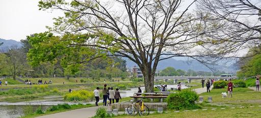 200426_nakaragi3.jpg