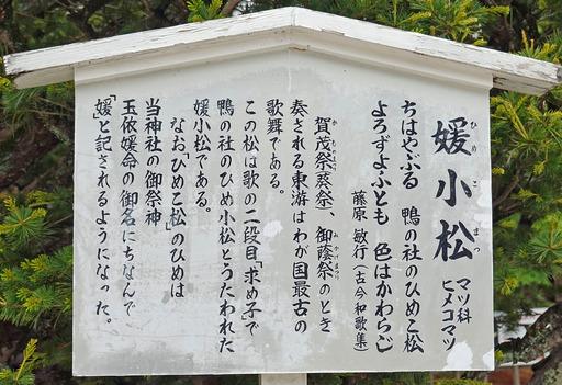 200515_setsumei.jpg