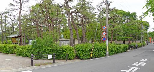 200518_park1.jpg