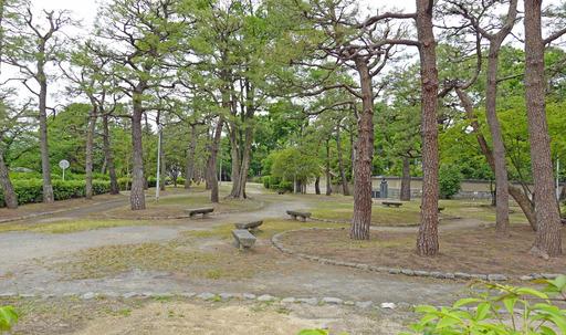 200518_park2.jpg