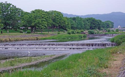 200606_kawa3.jpg