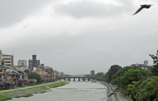 200713_kawayuka.jpg