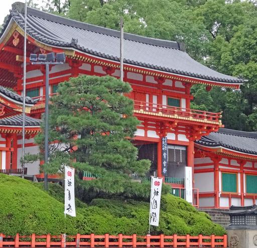 200713_yasaka1.jpg