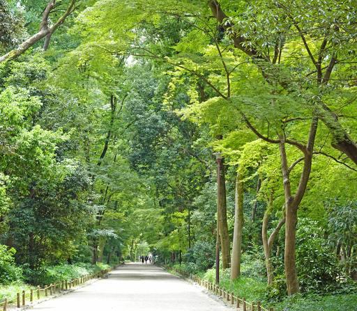 200813_tadasu.jpg