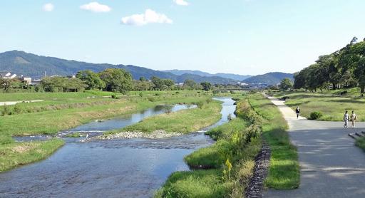 201012_kamo1.jpg