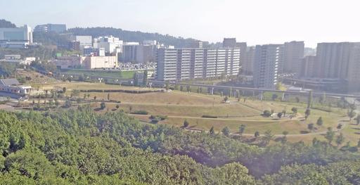 201020_minou2.jpg