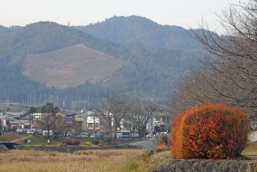 201229_funagata.jpg