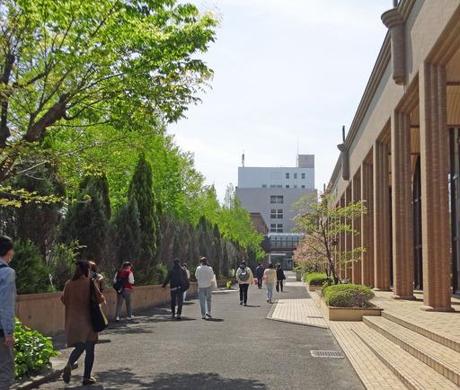 210415_sinryoku.jpg