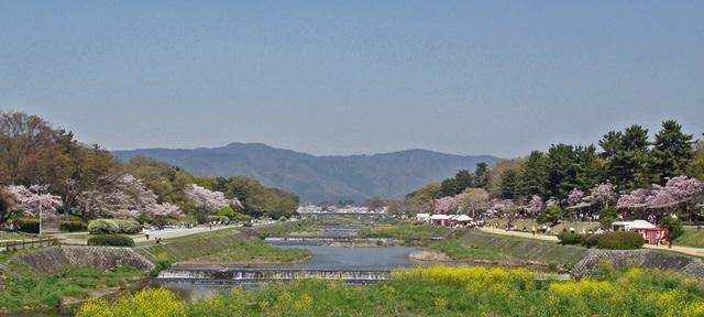 090411kamogawa2