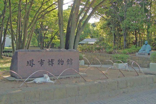 090905sakai1