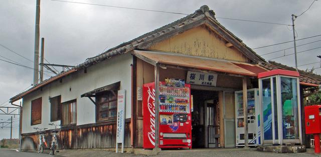 101123sakuragawa