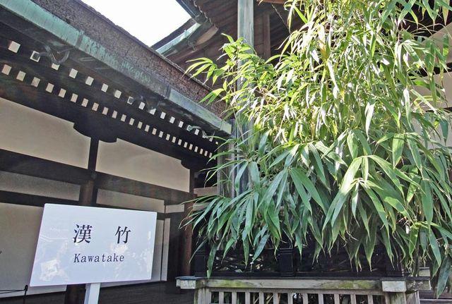 111101_gosyokawatake