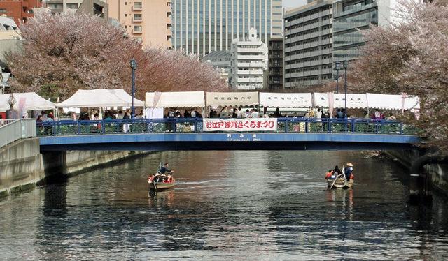 120415_sakuramaturi
