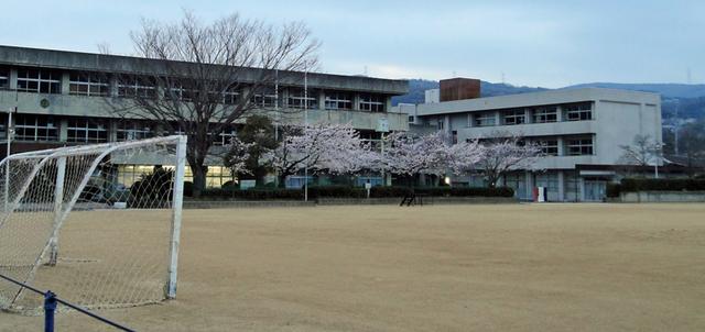 130401_syogakko
